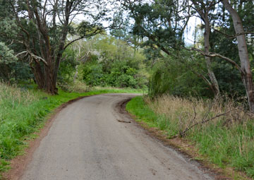Driveway to access the reserve from Leader Rd